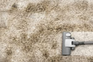 repair the carpet cleaning Bloomington IL